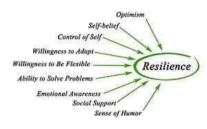 Diagram of Resilience